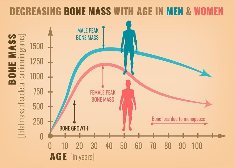 Bone mass and menopause