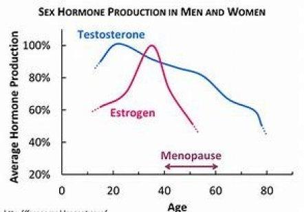 aging sex hormone production chart men vs women